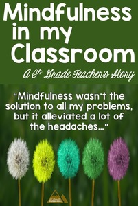 """Mindfulness wasn't the solution to all my problems, but it alleviated a lot of the headaches..."""""""